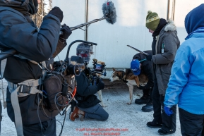 A film crew works with Anna and Kristy Berington during the pre-race vet check at Iditarod Headquarters in Wasilla, Alaska. Wednesday February 26, 2019 Photo by Jeff Schultz/  (C) 2019  ALL RIGHTS RESERVED