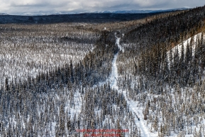 Bradley Farquar runs on the road to the Takotna checkpoint during the 2018 Iditarod race on Wednesday March 07, 2018. Photo by Jeff Schultz/SchultzPhoto.com  (C) 2018  ALL RIGHTS RESERVED