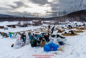 Teams rest on a hillside at the Takotna checkpoint durig their 24-hour layover on Wednesday afternoon during the 2018 Iditarod Sled Dog Race -- AlaskaPhoto by Jeff Schultz/SchultzPhoto.com  (C) 2018  ALL RIGHTS RESERVED