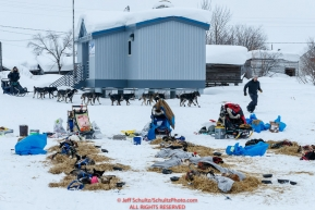Volunteer Brandon Skeel leads Richie Beattie's team to a parking spot at the Kaltag checkpoint on Sunday afternoon March 10th during the 2019 Iditarod Trail Sled Dog Race.Photo by Jeff Schultz/  (C) 2019  ALL RIGHTS RESERVED