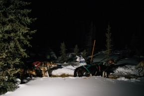Lance Mackey's team, helping out to head up trail after their 24 hour rest in Cripple.