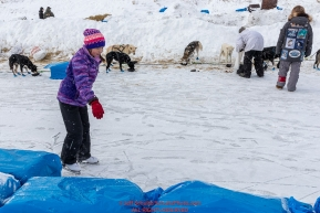 11-year old Grace Arca ice skates on the slough as teams rest at the Unalakleet checkpoint on Monday  afternoon March 12th during the 2018 Iditarod Sled Dog Race -- AlaskaPhoto by Jeff Schultz/SchultzPhoto.com  (C) 2018  ALL RIGHTS RESERVED