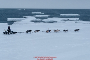 Jessie Royer runs on the sea ice with open water and icebergs in the backgroud as she makes her way toward the Nome finish line to place 3rd in the 2019 Iditarod sled dog race.Photo by Jeff Schultz/  (C) 2019  ALL RIGHTS RESERVED