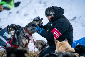Vet checks underway in Ruby, Alaska on March 13, 2020.