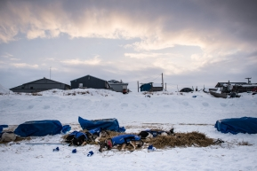 Wade Marrs's team resting in Unalakleet, March 15th, 2020.