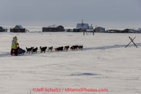 Monica Zappa on the trail just a few miles from the finish line along the Bering Sea coast passes summer fish shacks as she nears Nome on Saturday March 15 during the 2014 Iditarod Sled Dog Race.PHOTO (c) BY JEFF SCHULTZ/IditarodPhotos.com -- REPRODUCTION PROHIBITED WITHOUT PERMISSION