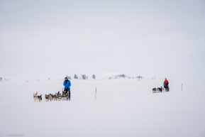 Joar Leifseth Ulsom followed by Travis Beals heading into Koyuk on March 16, 2020.