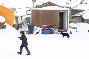 A youngster walks down the street in Nome AK Iditarod as people wait for the first Iditarod team to arrive on Monday, March 16, 2020. (Photo by Bob Hallinen)