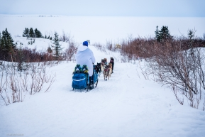 Jessica Klejka and her team head out of Koyuk on their way to Elim on March 17, 2020.