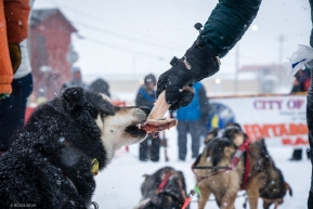 Special post race treats for Kelly Maixner's Iditorod finishers in Nome, AK on March 18, 2020.