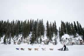 Aliy Zirkle, heading to Nome from White Mountain, March 18th, 2020.