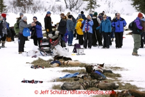 Spectators stand on frozen Puntilla Lake at the Rainy Pass checkpoint and watch Alliy Zirkle's team rest March 4, 2013.
