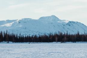 Across Finger Lake