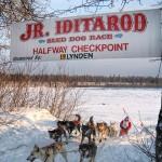 Jr. Iditarod